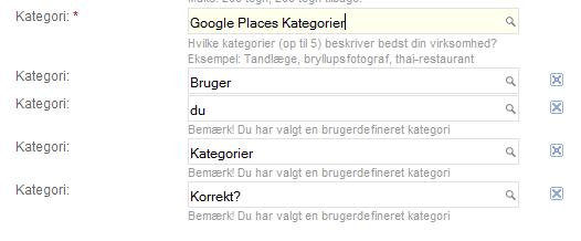 Bruger du Google Places kategorier korrekt?