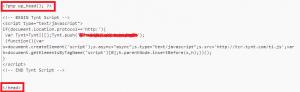 Tynt implementering WordPress Header